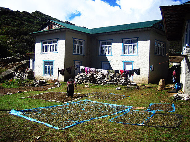 Una casa en Khumjung