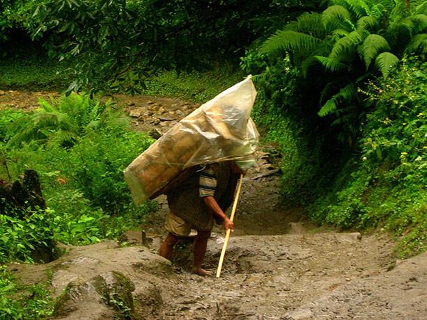 sherpa-lluvia