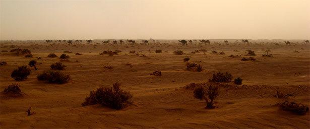 Una caravana de camellos bajo una tormenta de arena