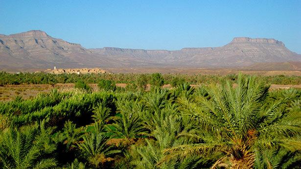 Zagora entre un mar de palmeras y montañas en el valle del Draa