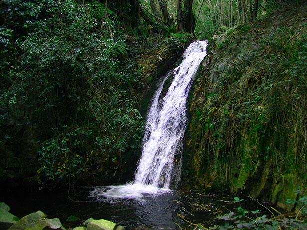Cascada de Riells