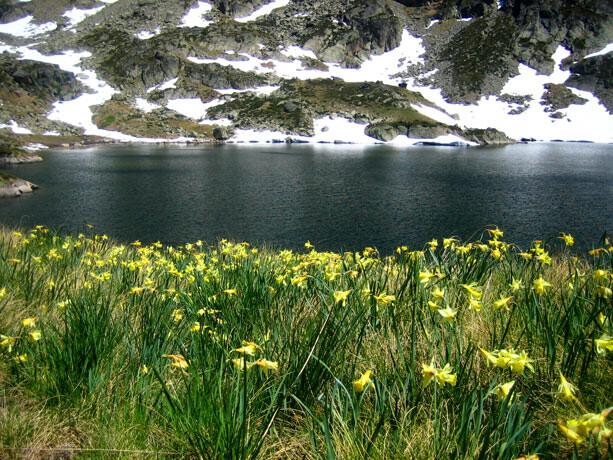 primavera-lago-nieve