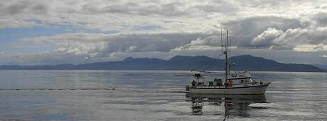 barco pesquero alaska
