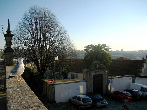 vistas-catedral