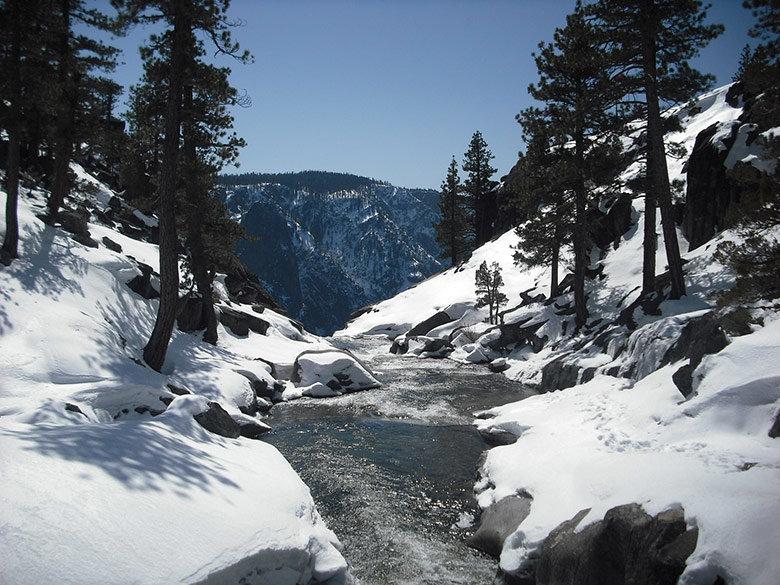 bosque-tahoe