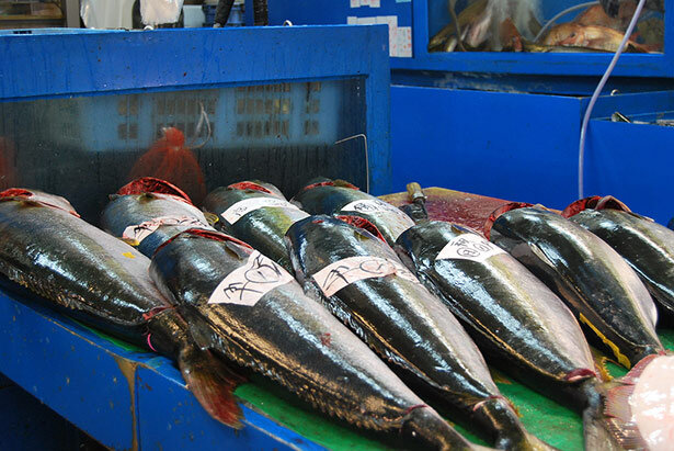 Pescado en el mercado de Tsukiji