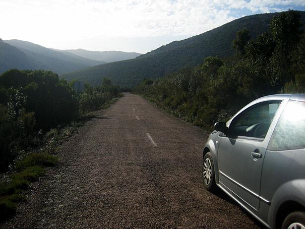 Encarando la estrecha carretera en el parque nacional de Cabañeros