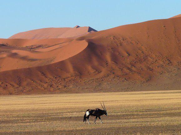 Desierto_Namibia