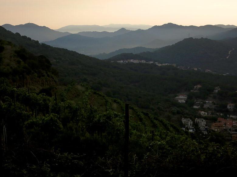 Vistas a Alella y las montañas de Montseny
