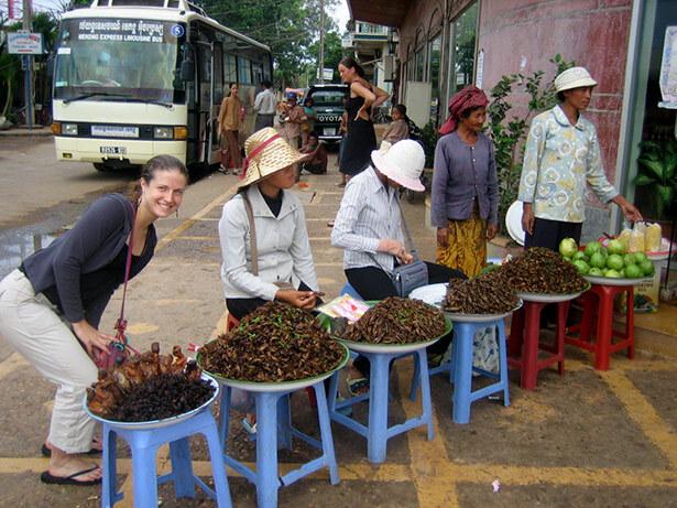 grillos-camboya