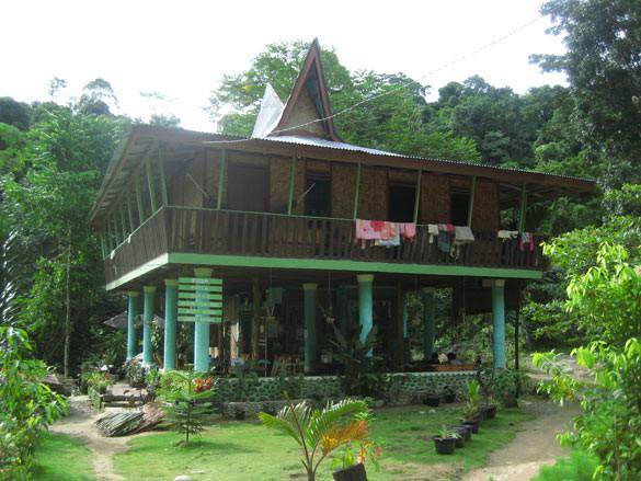 nora_rainforest_bukit_lawang