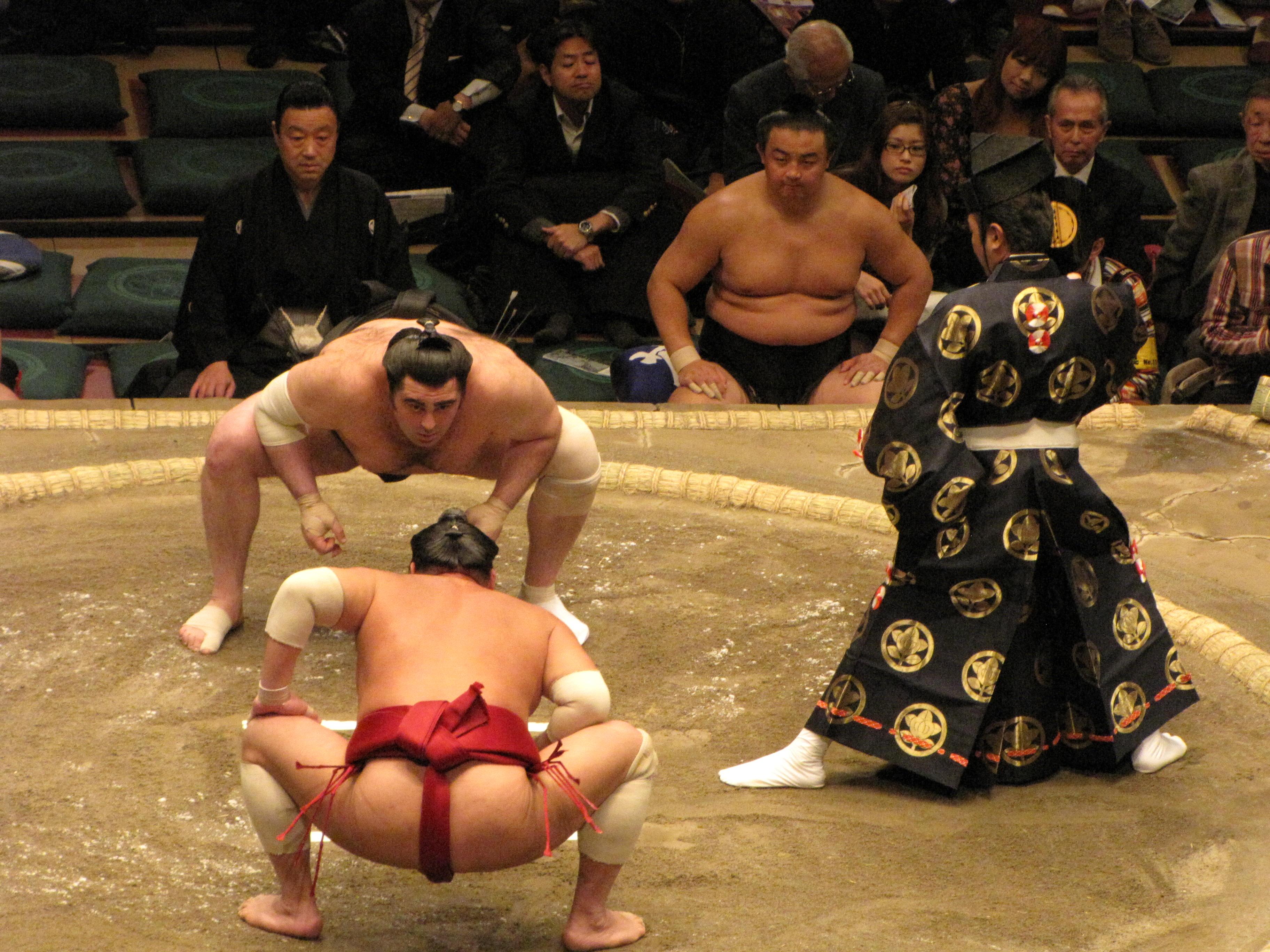 Luchadores de sumo en Tokio, Japón