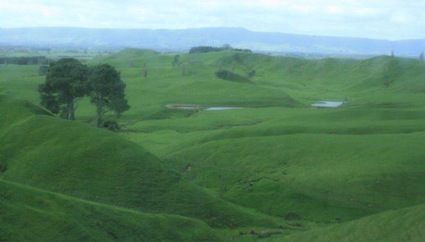 Las colinas que sirvieron de inspiración a Peter Jackson cuando buscaba Hobbiton desde una avioneta.