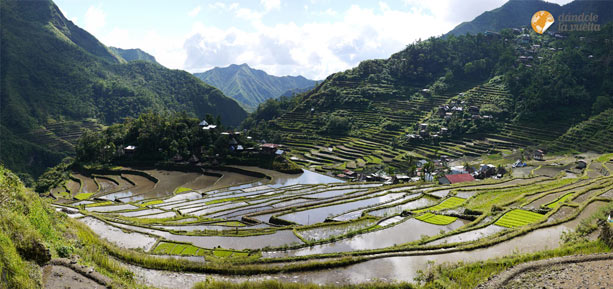 panoramica-rice-terraces-batad-2