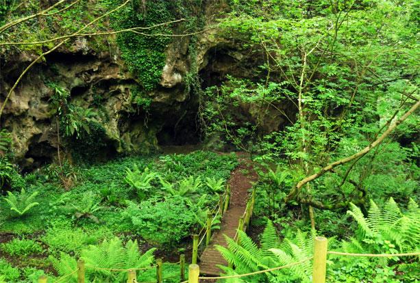cuevas-andia-asturias