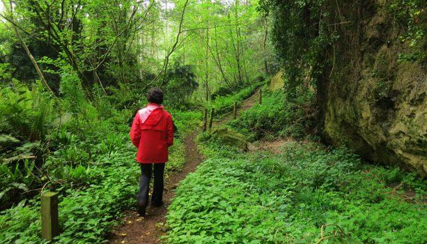 cuevas-andina-asturias