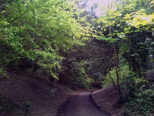 saint-annes-park-walk