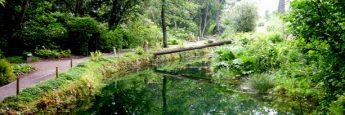 Otro de los bellos rincones del Jardín Botánico de Gijón.