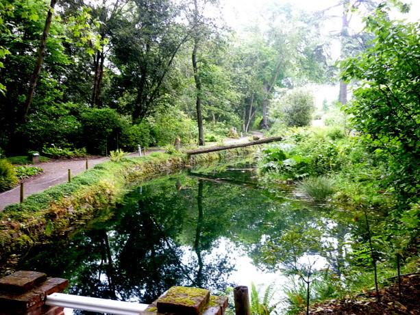 Visita al jard n bot nico de gij n viajablog for Jardin urbano gijon