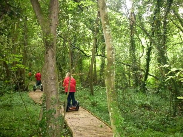 Visita al jard n bot nico de gij n viajablog for Como ir al jardin botanico