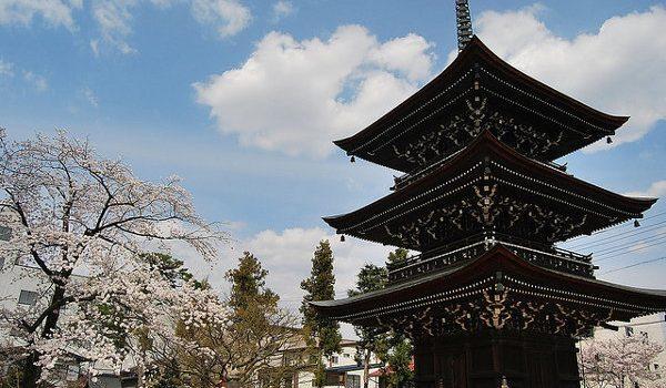 Pagoda-del-Hida-Kokubun-Ji