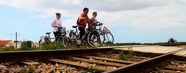 alvarge-bicis-tren