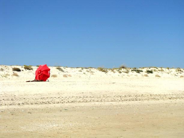 alvarge-playa