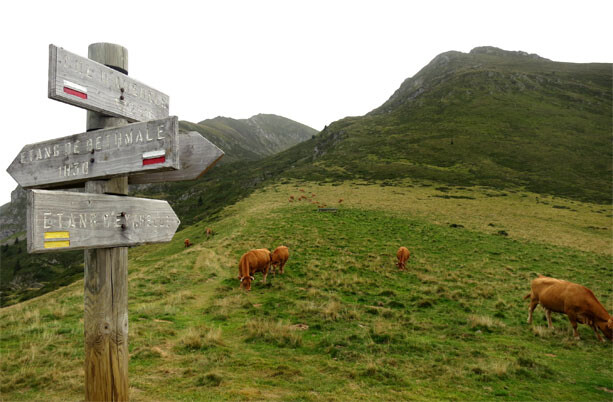 collado-pirineos-ariege