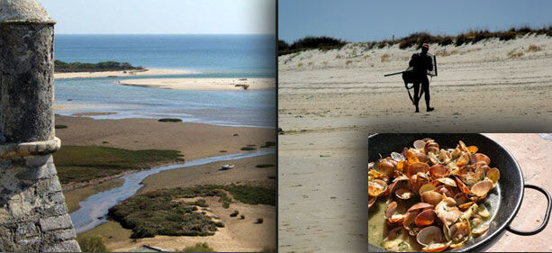 costa-algarve-playas