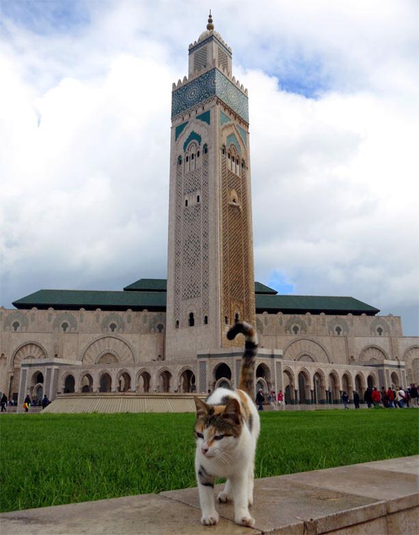 mezquita-hassan-casablanca