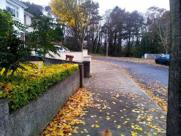 otoño-en-howth