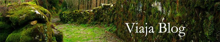 Portada 11: Camino a Idoia, Navarra