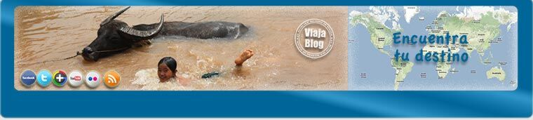 Portada 150: Bufalos de agua, Malasia