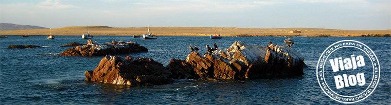Portada 97: Pelicanos en las Islas Ballestas, Perú
