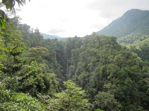 Increible desplazarte a 100 metros del suelo a través de casi 1 km de bosque en esos cables