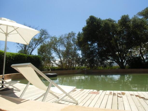 La perca de agua fresca me pareció mucho mejor que la piscina cubierta en el calor reinante
