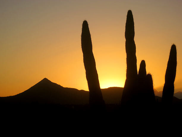 atardecer-desierto-california