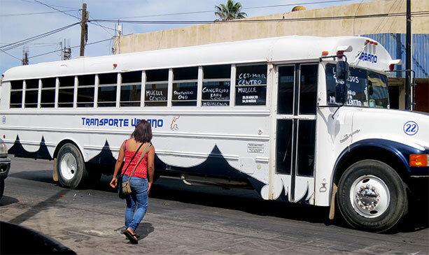 autobuses-loscabos
