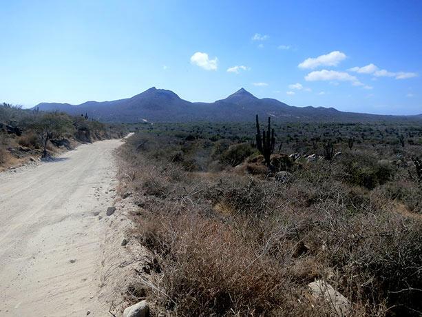 desierto-baja-california