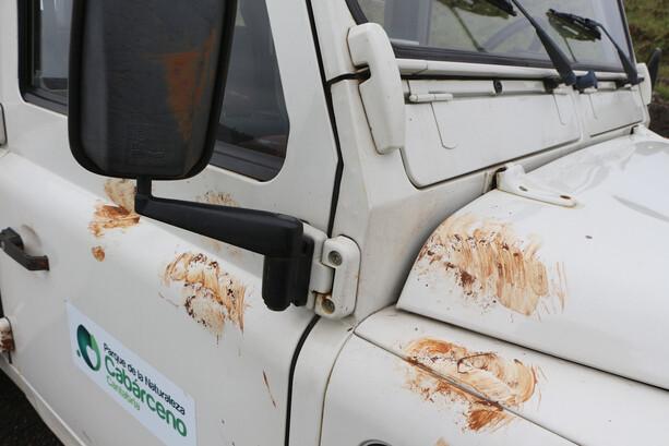 Huellas de osos en el Land Rover