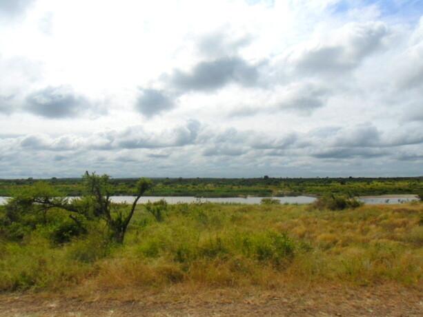 El bello paisaje del Kruger compensa los momentos en que no ves animales