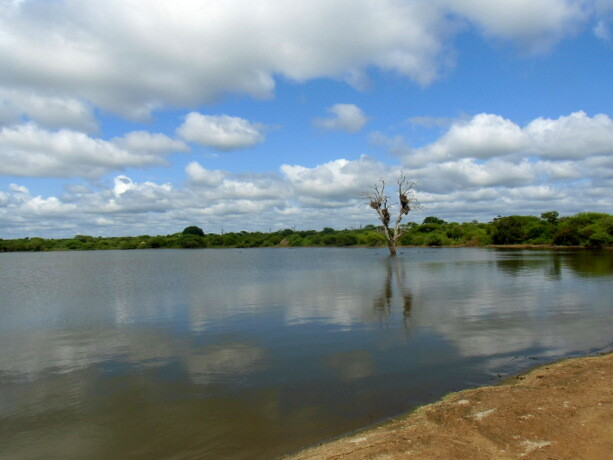 Espectaculares paisajes del Kruger