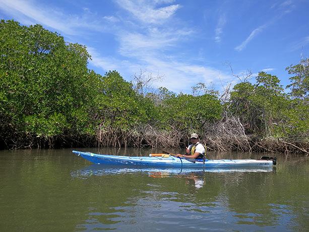 manglares-espiritu-santo