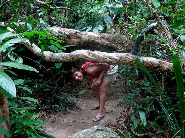 perhentians-jungla