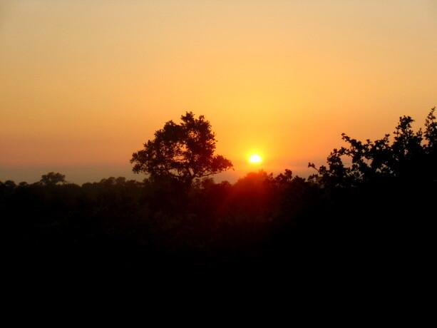 Amanece en Kruger Park