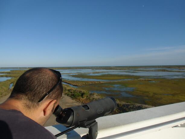 Juan Carlos en el observatorio de aves. Pudimos ver gran cantidad de ellas