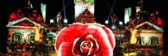 flor-lyon-fiesta-luces
