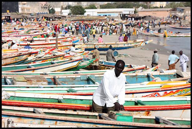 Dakar, imagen cedida por (c) Susana Busquets