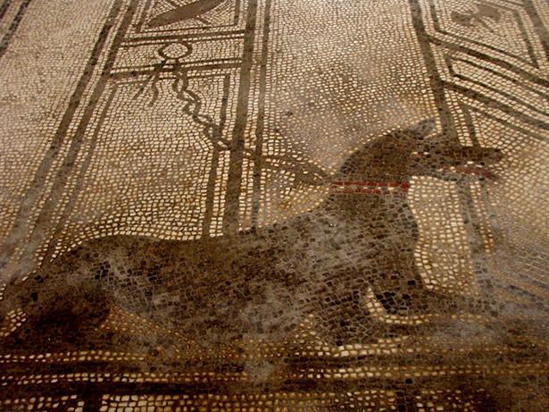 mosaico-perro