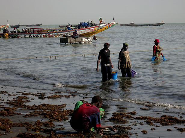 playa-joal-senegal